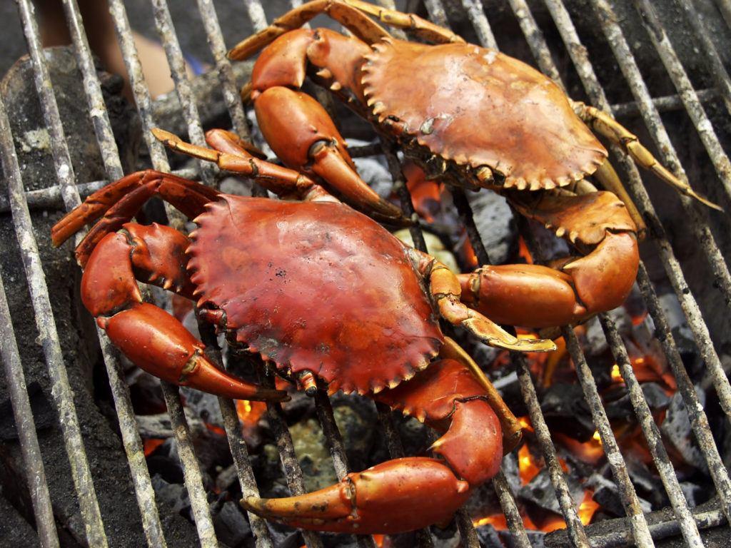 memasak kepiting
