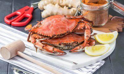 cara makan kepiting yang tepat membutuhkan alat-alat khusus