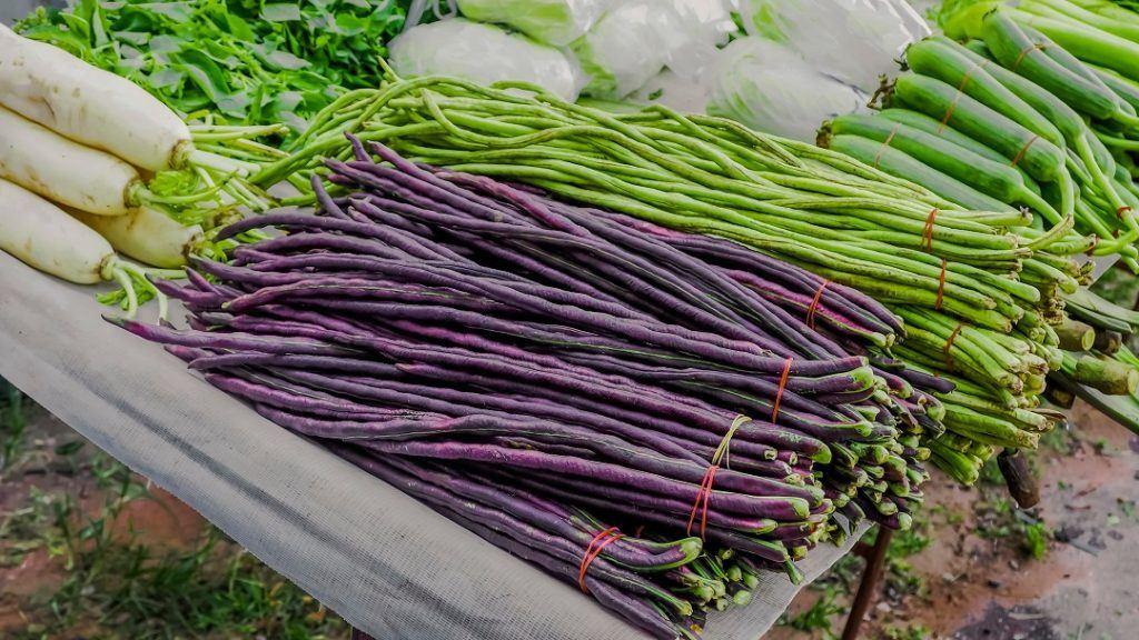 Tumis kacang panjang bisa dibuat juga dari kacang panjang ungu.