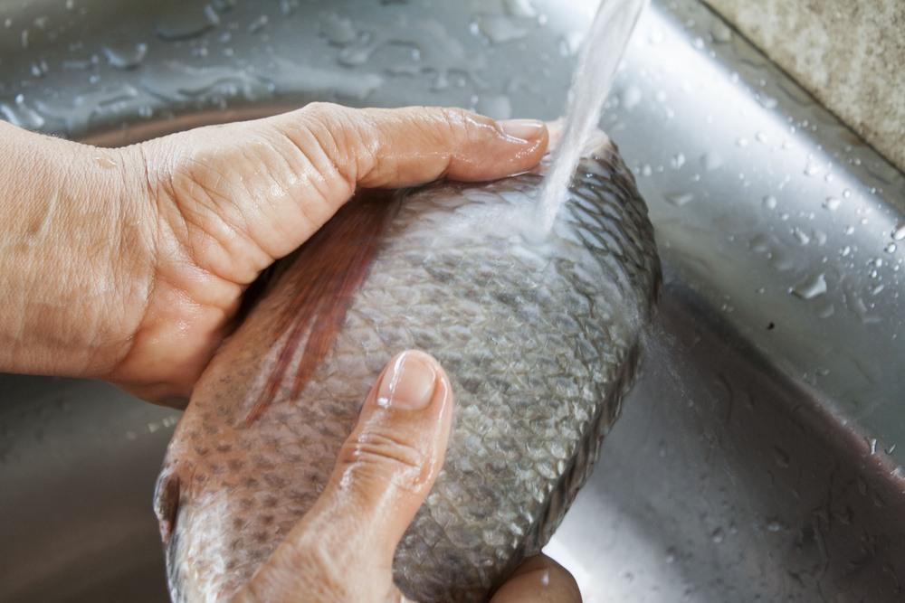 Seseorang tengah mencuci ikan sebagai pembuka cara menyimpan ikan di kulkas.