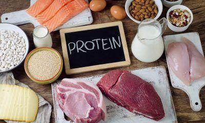 Pilihan makanan yang mengandung protein tinggi disajikan di atas meja.