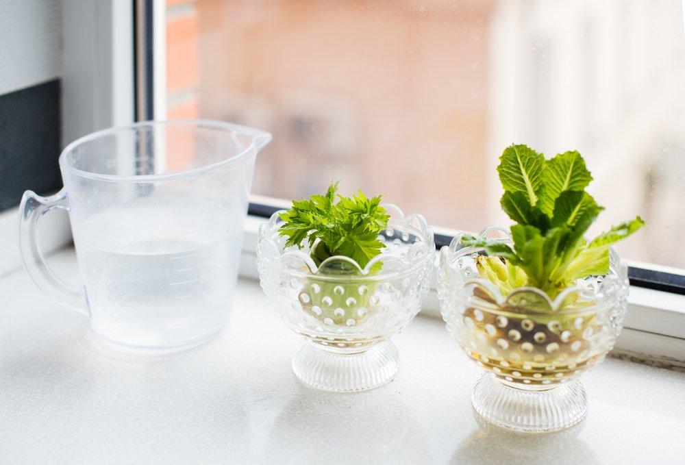 Wadah berisi air dan sayuran berjejer.